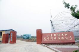 山东锦绣兰业花卉科技有限公司