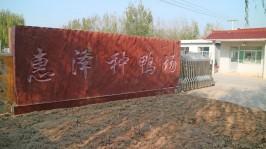 惠泽种鸭场