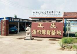 邹平市码头镇卢怀涛养鸡大棚1